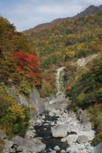 秋山郷 切明  中津川の紅葉     (10月21日撮影)
