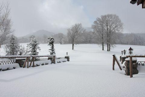 白銀のガーデンテラス  11月26日撮影