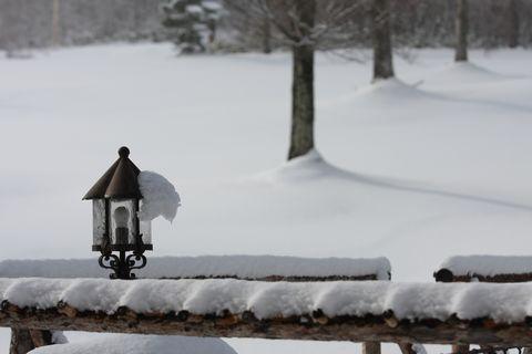やわらかな冬の陽ざし・・・  11月26日撮影