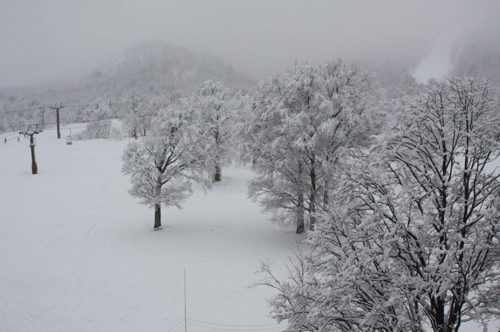 真冬の大気・・・   1月31日