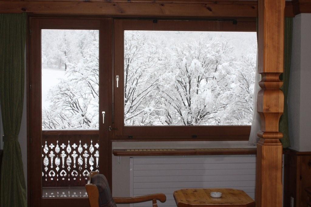 窓いっぱいに広がる雪景色  1月31日撮影