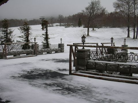雪かきも完了