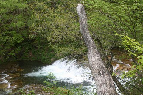 ハーモニカ滝の春光眩く・・・