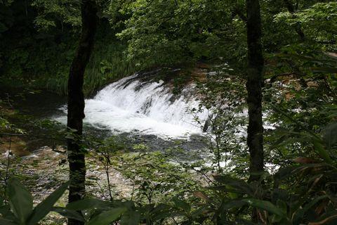 ハーモニカ滝     8月2日撮影