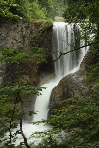 大滝(おおぜん)    8月2日撮影