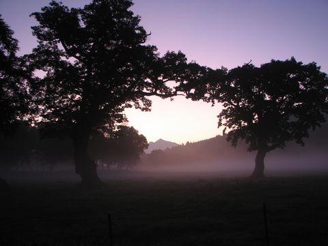 早朝の気温は・・・「シャッターを押す指がかじかむほどだった」by カメラマン