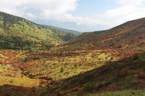 紅葉の始まり 白根山   9月24日撮影