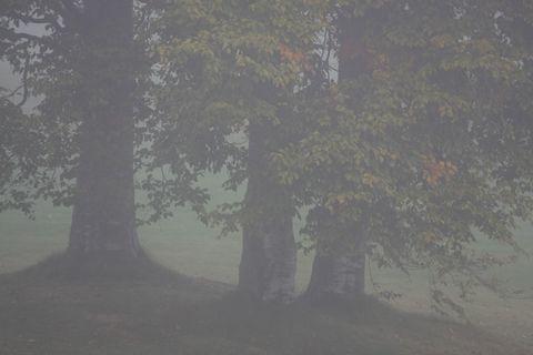 幽玄なる大気    9月29日撮影