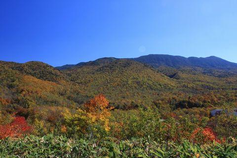 大自然の神秘の色です    10月15日撮影