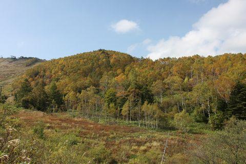 志賀高原一の瀬は標高1,600m   10月4日撮影