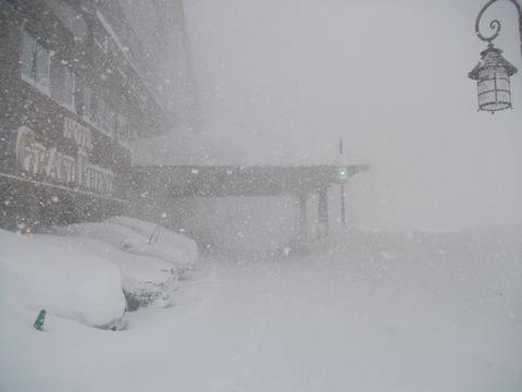 スノー・ホワイト・ホテル       2月6日撮影