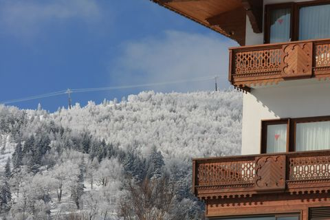 4月の雪・・・・でも サラサラ・パウダー です      4月8日朝 撮影