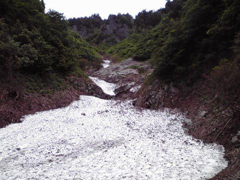 奥志賀渓谷沿いの雪渓  6月16日撮影