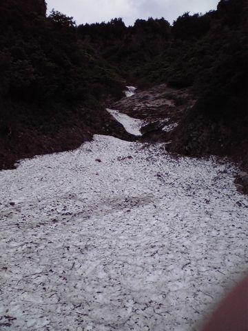 ひと冬分の雪が山を緑に・・・・