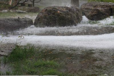 音を立てて降る雹    6月2日午後4時撮影