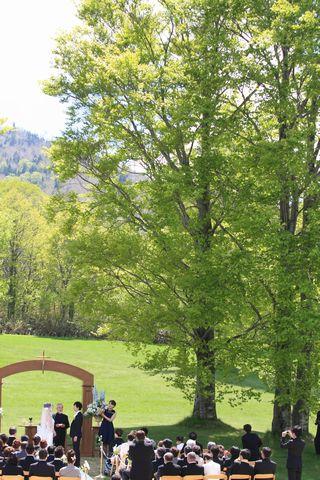 新緑のブナがお祝いします    6月6日撮影