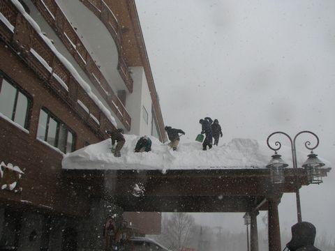 まず 人海作戦で雪を落とします
