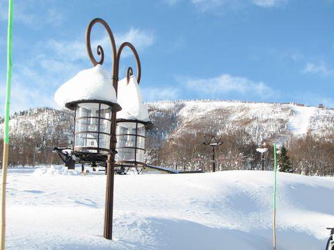 天然パウダー積雪220cm