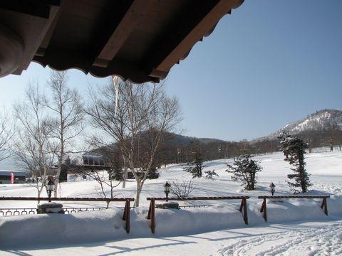 新雪と青空の土曜日     2月27日撮影