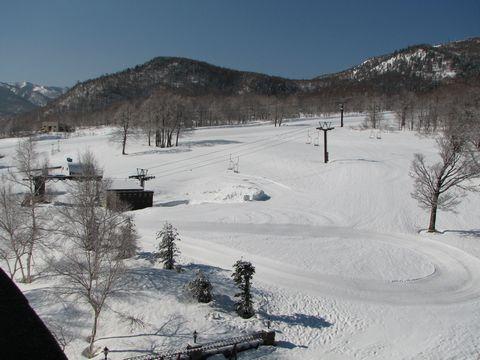 やっぱり スキーに行こう!