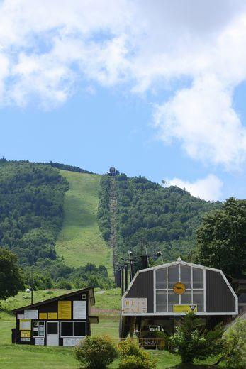 緑のゲレンデは奥志賀の夏のトレードマーク   8月8日撮影