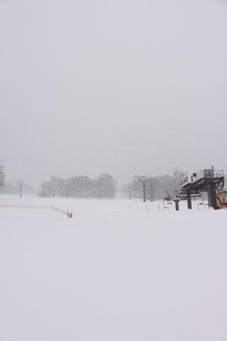 天然パウダースノー ローディング中・・・・   1月11日撮影