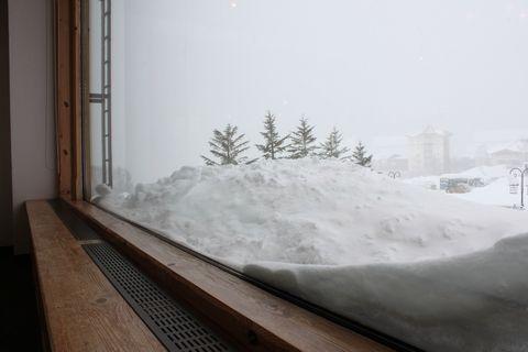 当ホテル 2階 の窓辺です        2月1日撮影