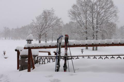 3月の冬景色           3月10日撮影