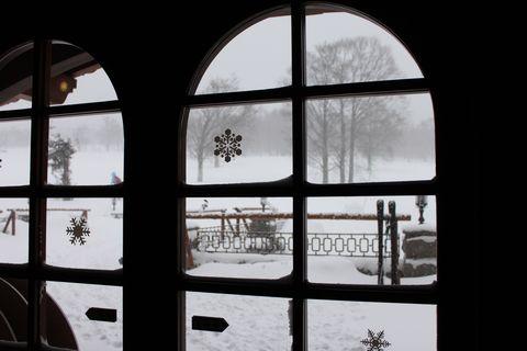 """どう見ても """"冬景色"""" ですよね・・・"""
