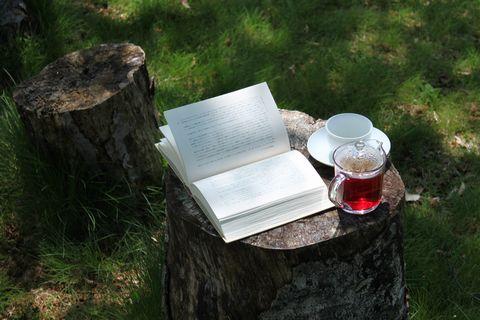 初夏の読書を楽しみ・・・・