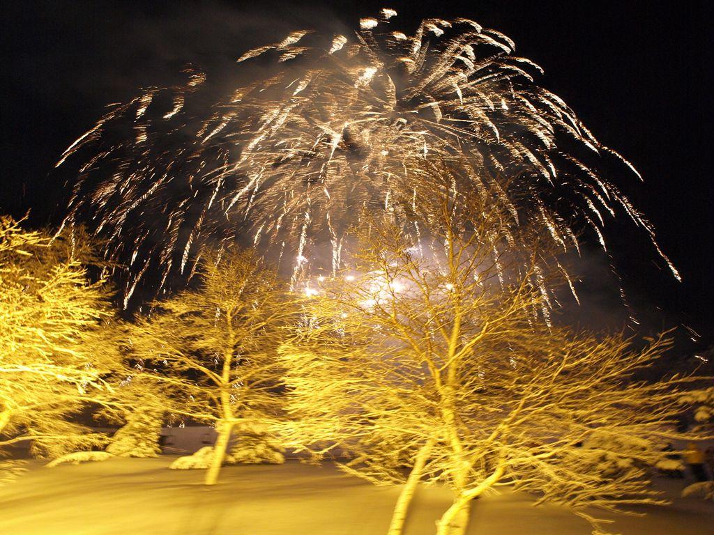 奥志賀の年越し花火
