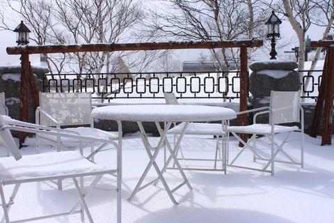 ガーデン・テラスも再び 真っ白            3月21日撮影