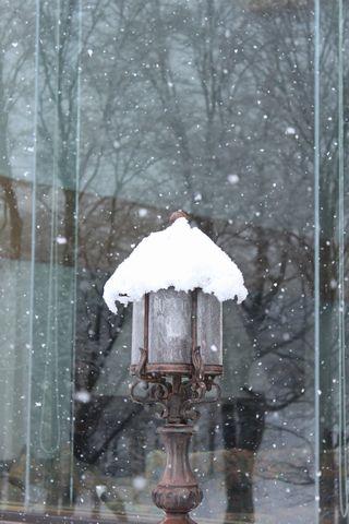 春の雪               4月3日朝 撮影