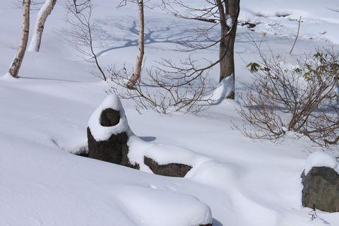 4月の新雪は天の親切?!        4月22日朝 撮影
