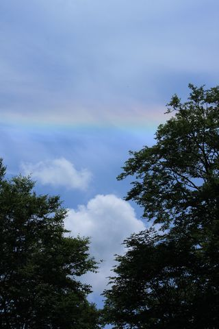 「水平環」という虹