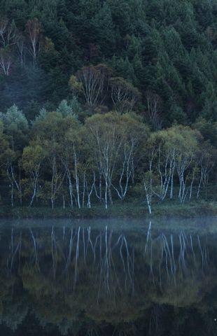 夜明け前 その1         10月21日早朝 撮影