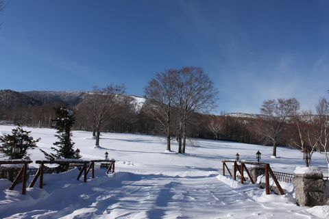 スキーイン/スキーアウト