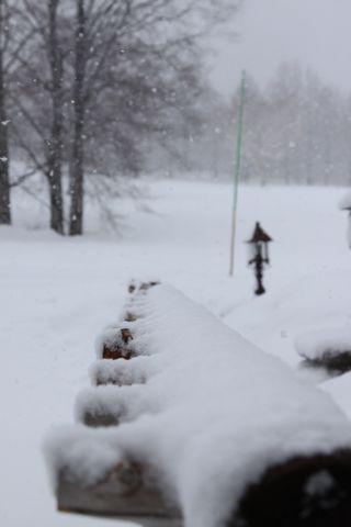 雪もちょっとやさしげ・・・