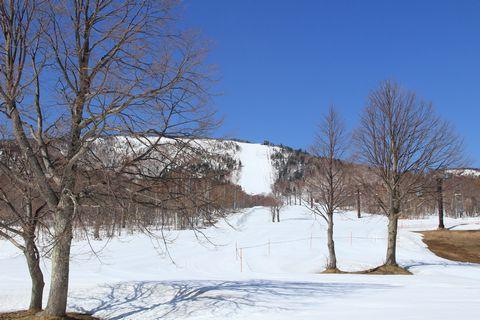 でも スキー場はシーズン中