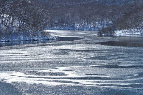 琵琶池にて       12月8日撮影
