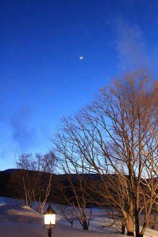春の月 枯木の中を上りけり (子規)