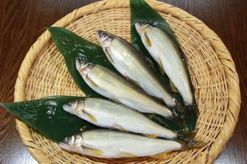 鮎 ~ 夏を告げる魚 その2