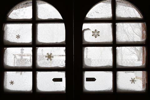 強風のため 館内より撮影    1月18日