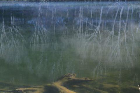 木戸池にて
