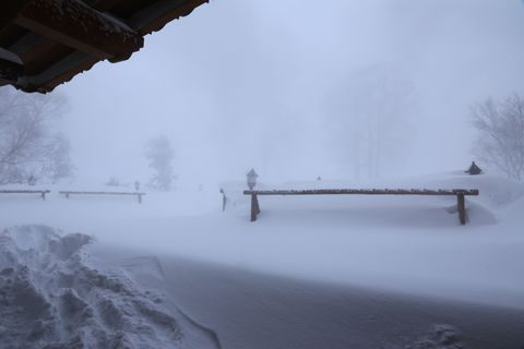 テラスの除雪スタート   1月15日撮影